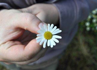 Как научить мужчину быть щедрым
